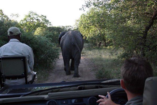 Preguntas Frecuentes Antes de Viajar a África