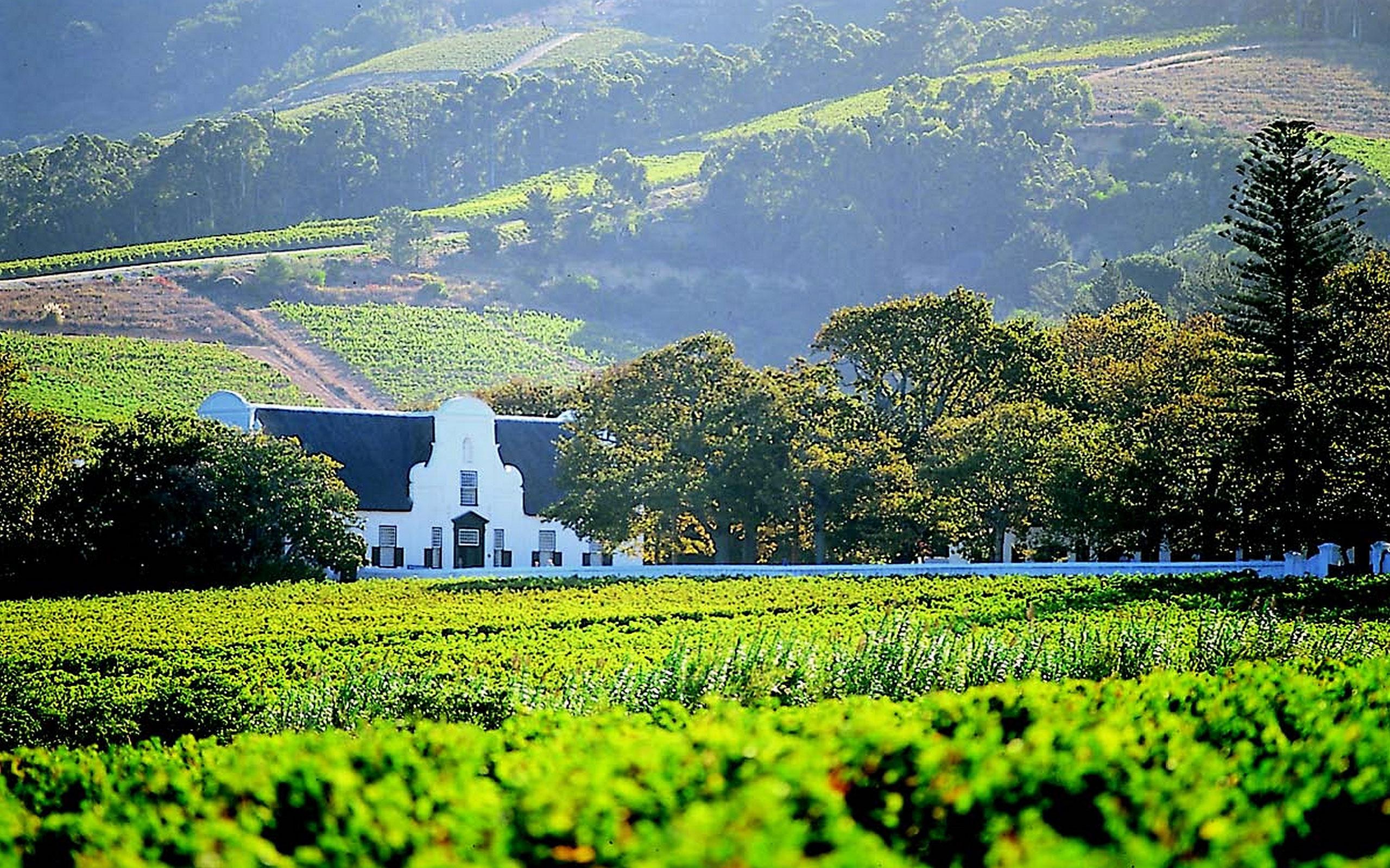 Hawksmoor house stellenbosch sudafrica enkosi africa region de los vinos del cabo