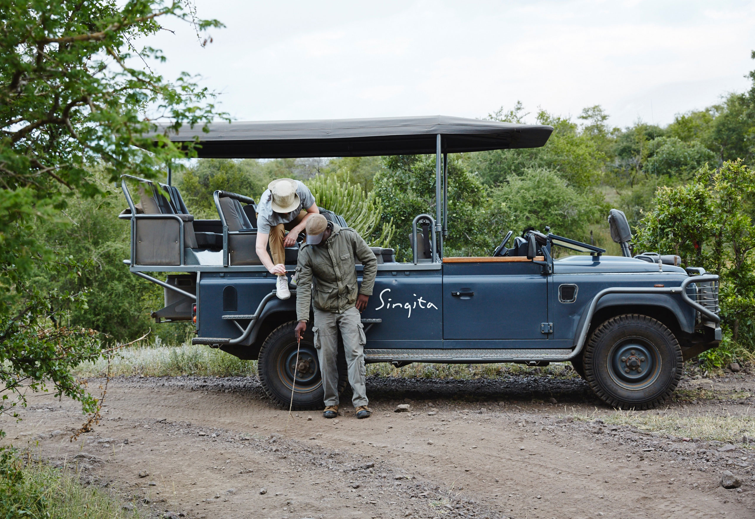 Qué Haces En Un Safari enkosi-africa-singita-lebombo-kruger