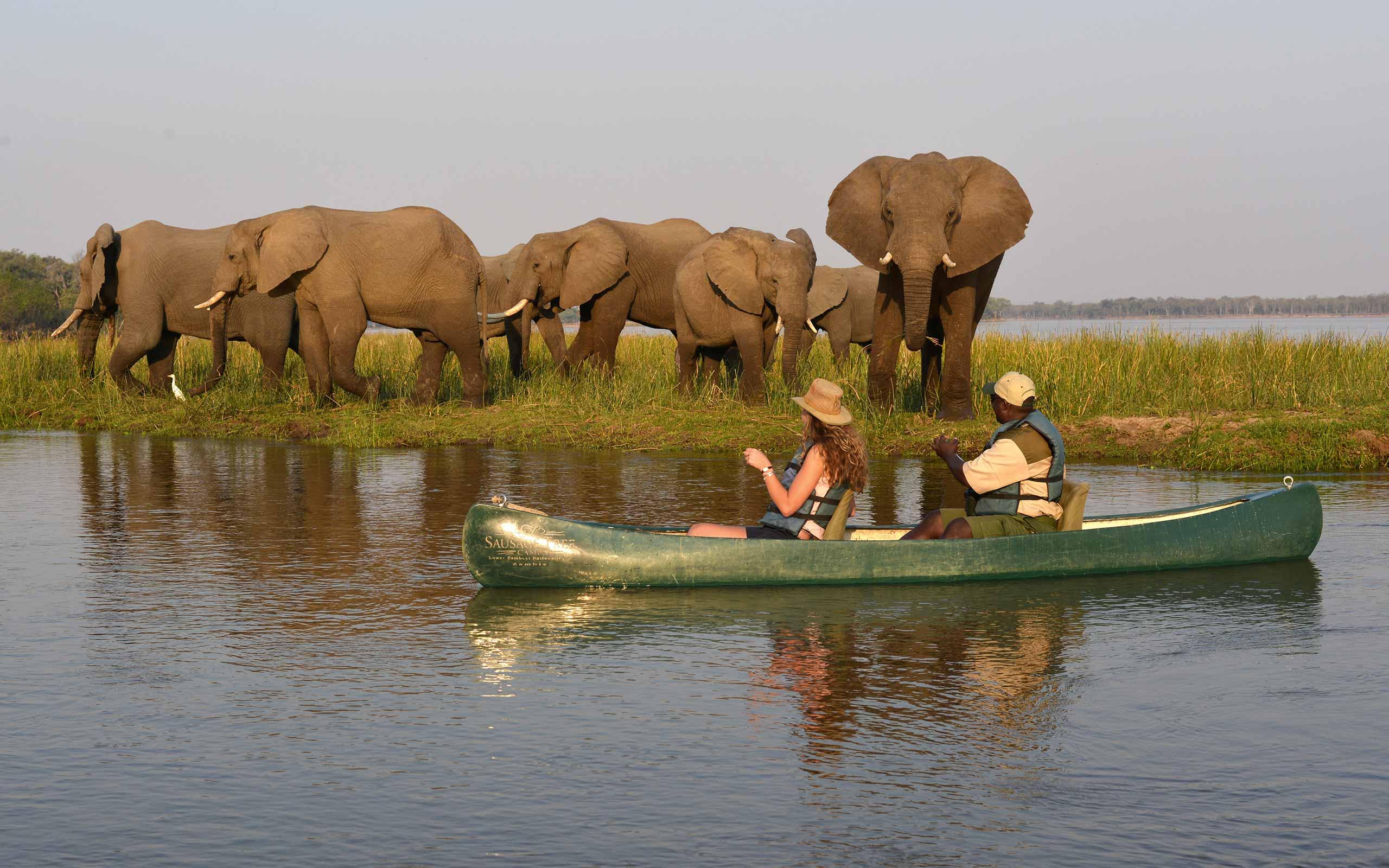 enkosi-africa-safari-zambia-lower-zambezi-sausage-tree-camp-