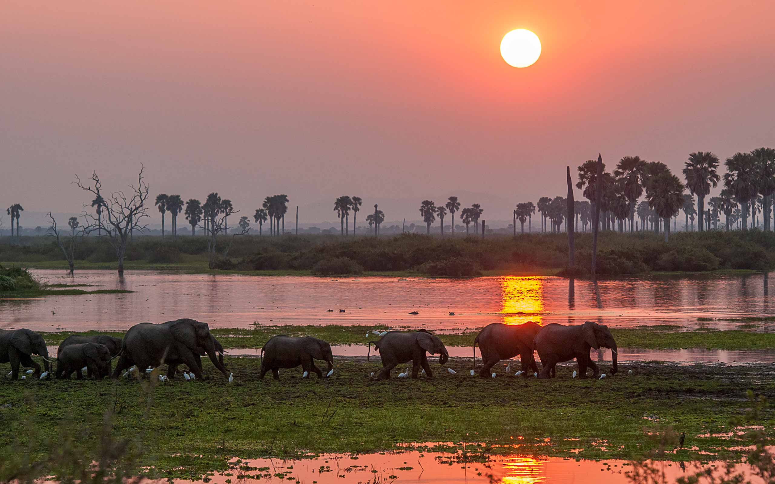 enkosi-africa-safari-tanzania-selous-roho-ya-asilia-river sunset