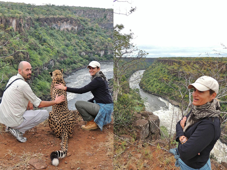 The Elephant Camp Victoria Falls Zimbabwe guepardo (9)