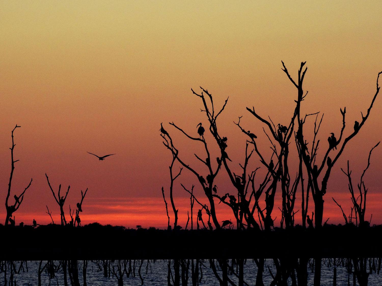 lago kariba zimbabwe enkosi africa sunset puesta de sol