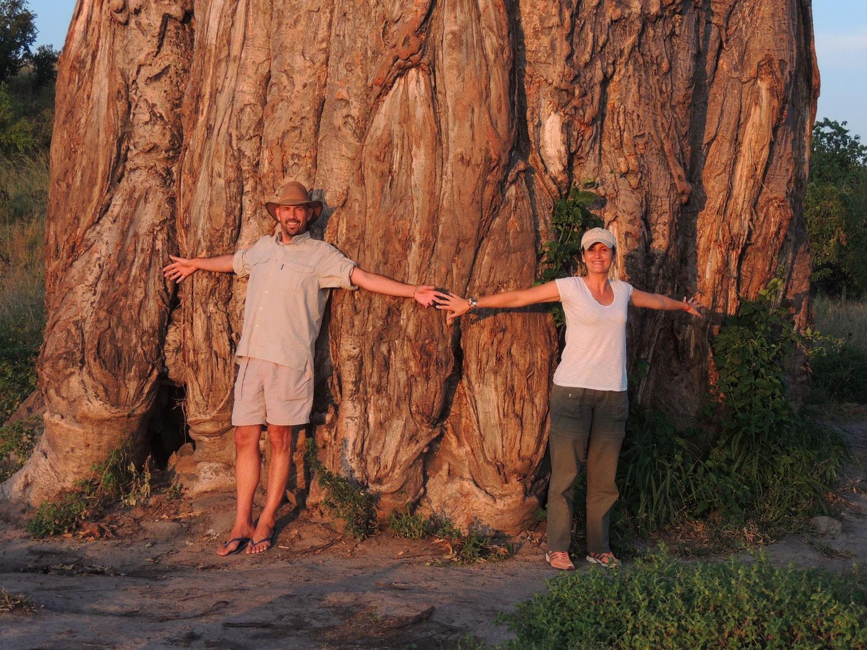 savuti botswana baobab sara jordi enkosi africa