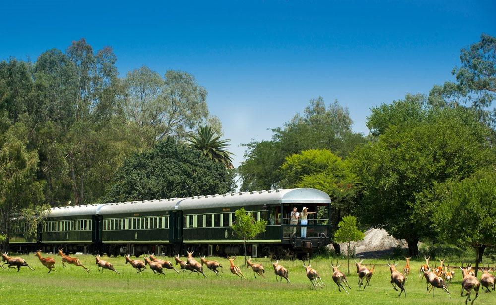 rovos-rail-safari