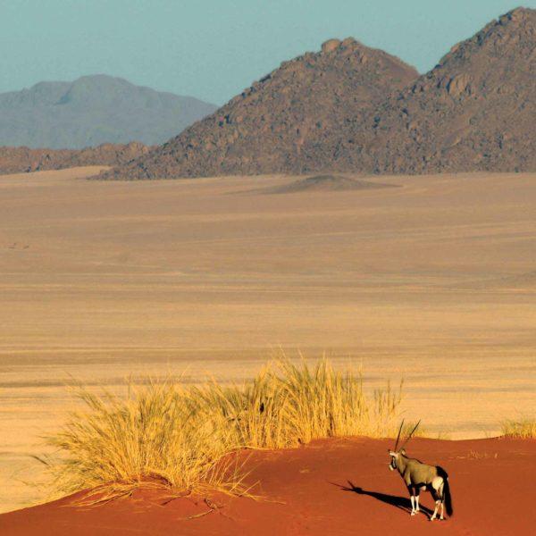 La Reserva Natural NamibRand