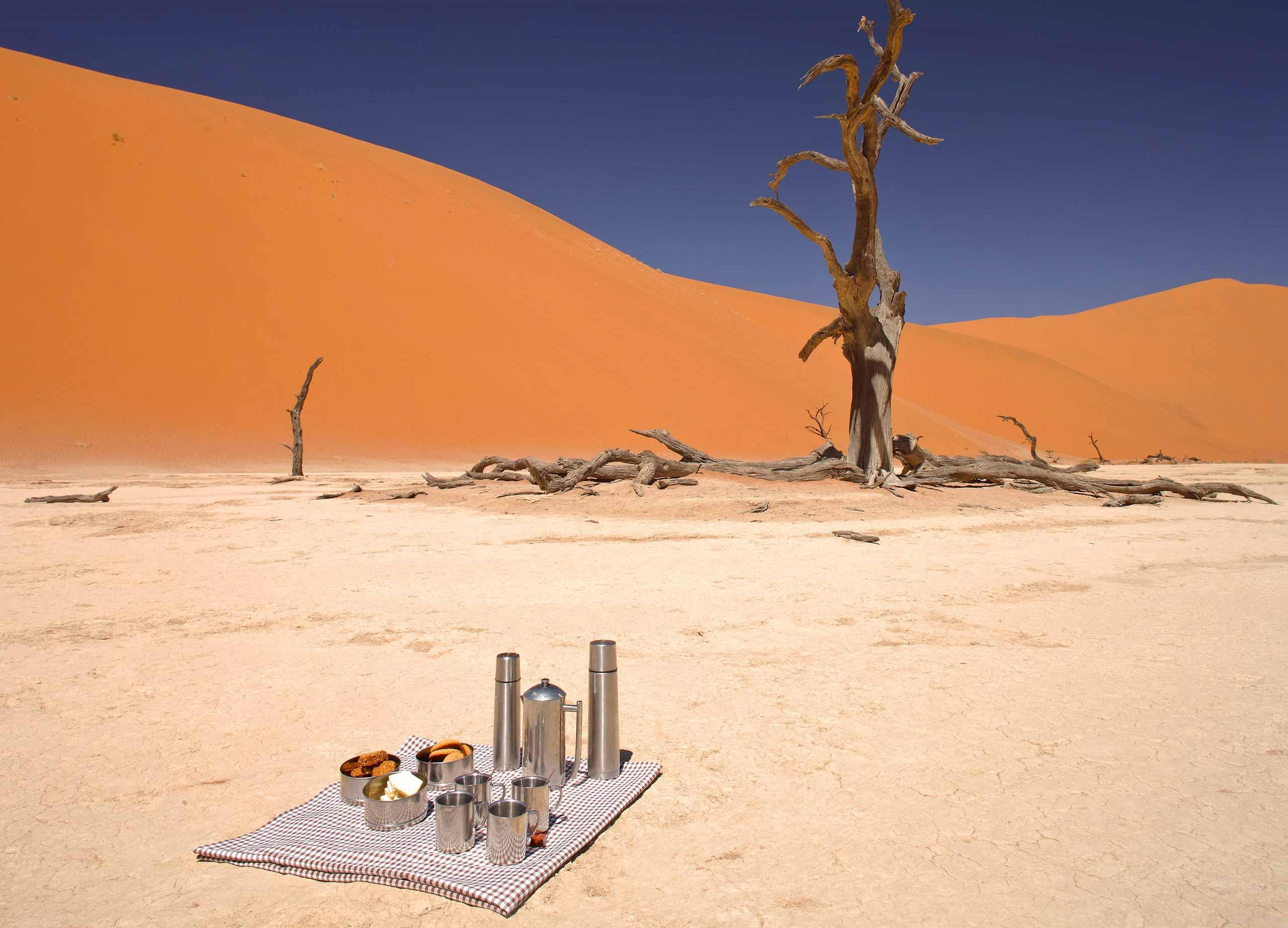 enkosi-africa-safari-namibia-sossusvlei-desert-lodge-andbeyond-dead-vlei