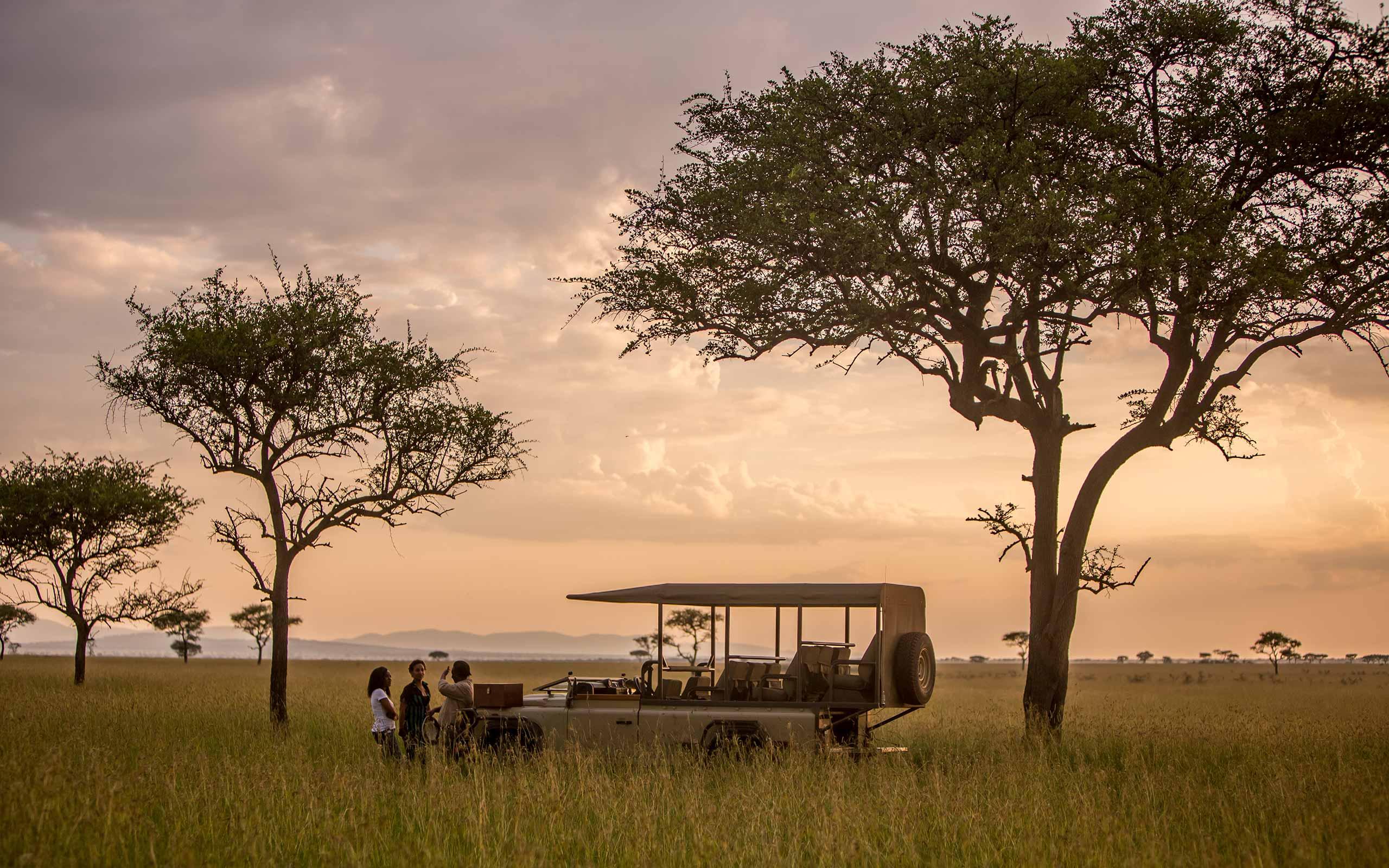enkosi-africa-safari-tanzania-serengeti-grumeti-singita-fau-faru-landscape