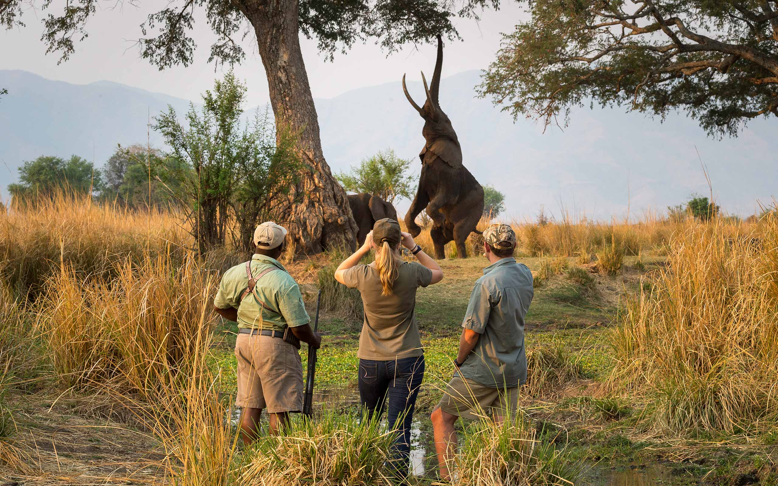 enkosi-africa-safari-zimbabwe-mana-pools-wilderness