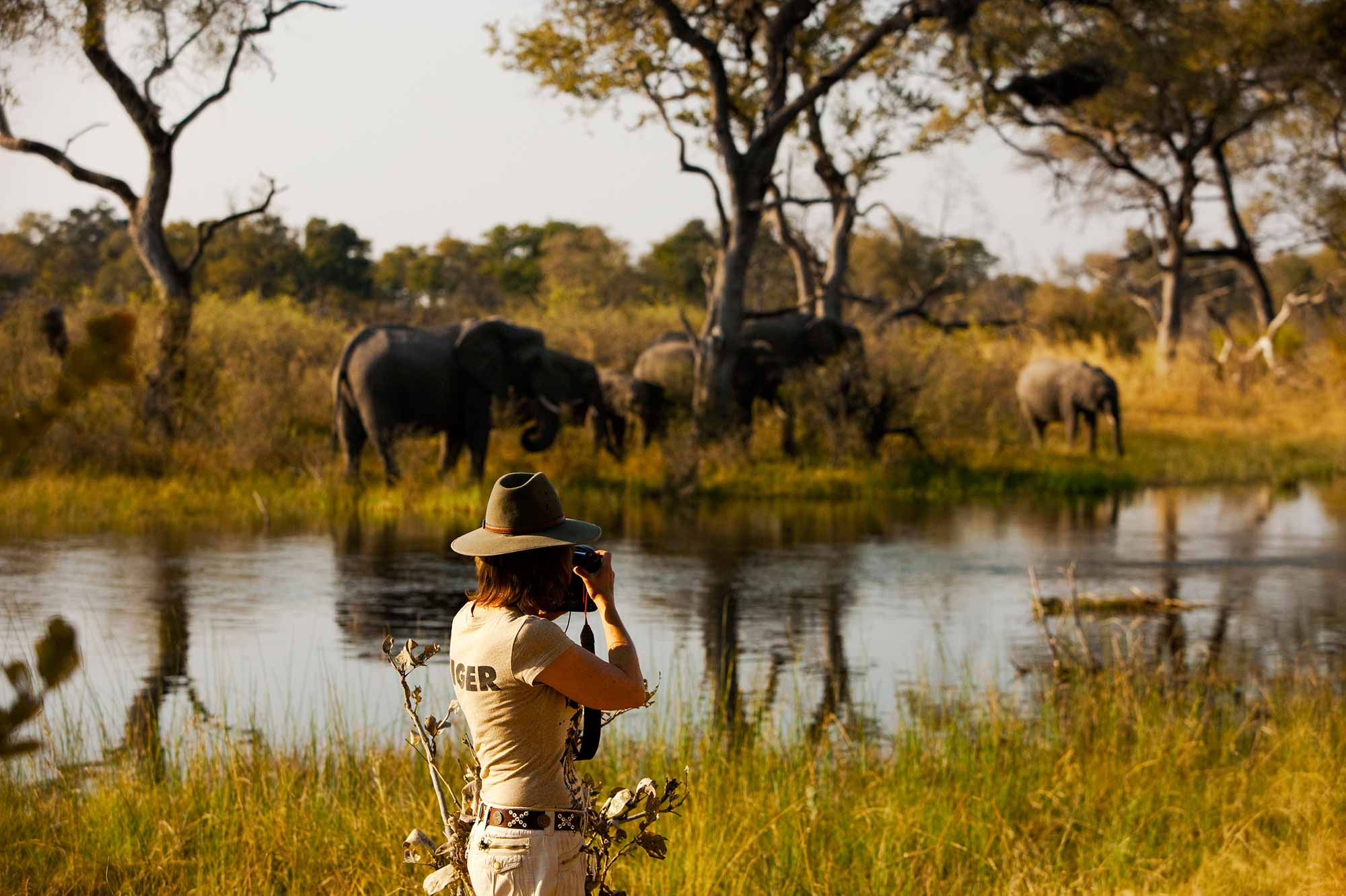 enkosi-africa-safari-botswana-selinda-explorers-camp-great-plains-conservation-game-drive-elephants