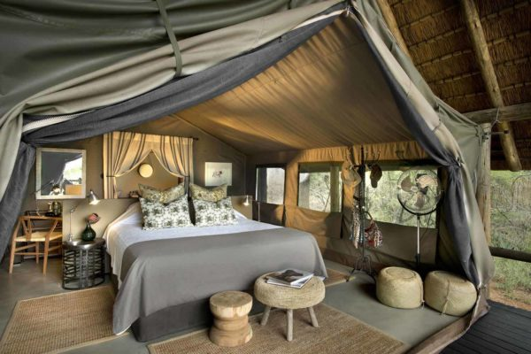 enkosi-africa-safari-sudafrica-timbavati-tanda-tula-camp-4