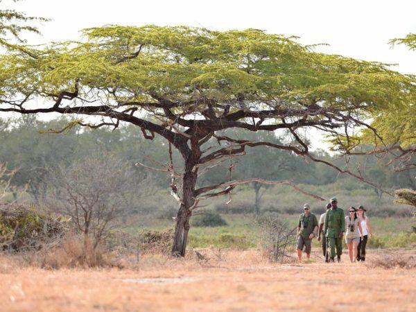 10 días – Safari Remoto en Tanzania