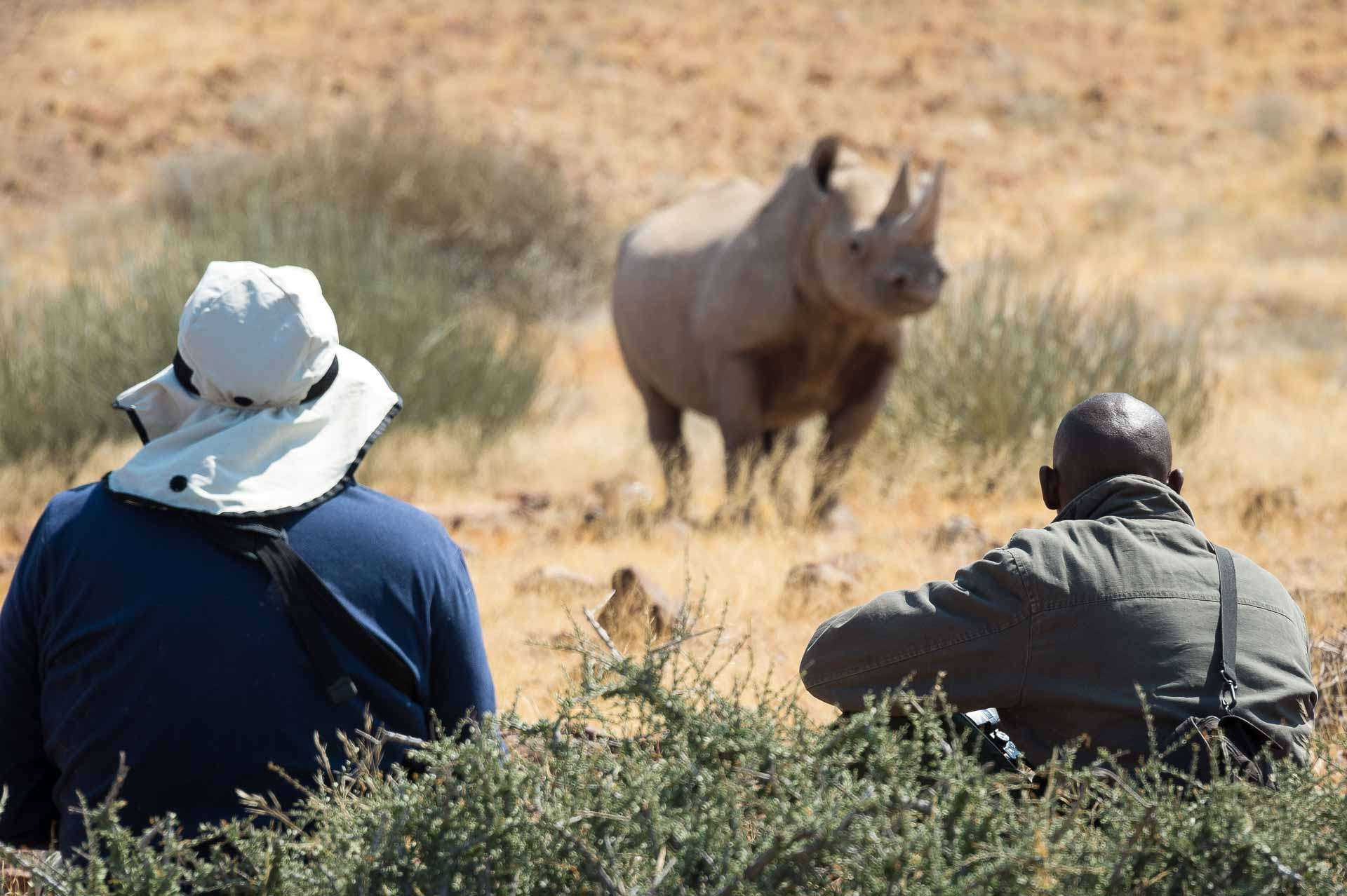 enkosi-africa-safari-namibia-damaraland-desert-rhino-camp-wildernes-walking