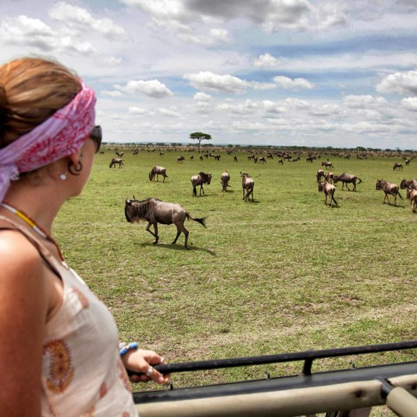 ¿Cuánto Cuesta un Safari en África?
