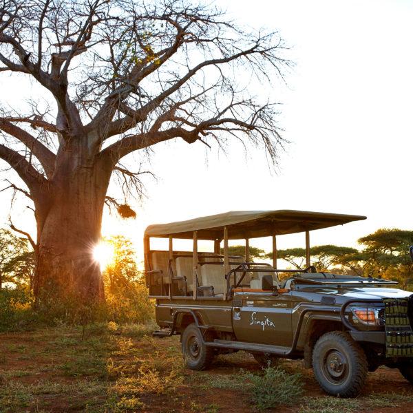 Viajar en Tiempos de Covid: Cómo Llegar a los Destinos de Safari YA Abiertos